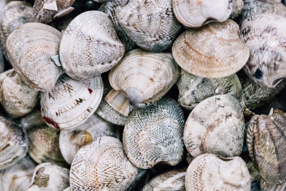 Lupino | Finittica: lavorazione e vendita di molluschi bivalvi vivi