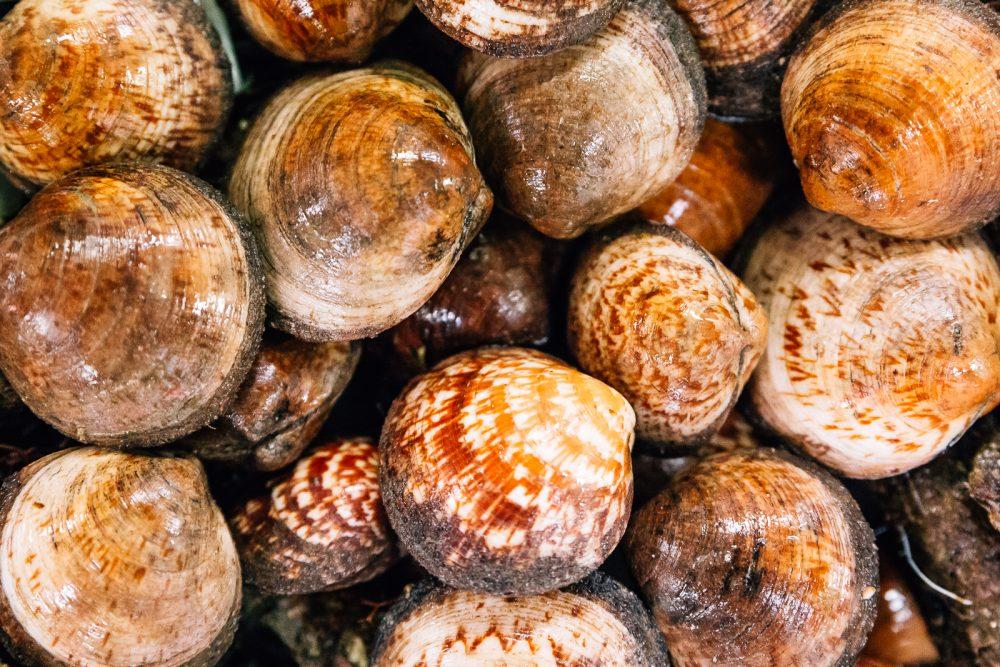Piè d'asino | Finittica: lavorazione e vendita di molluschi bivalvi vivi