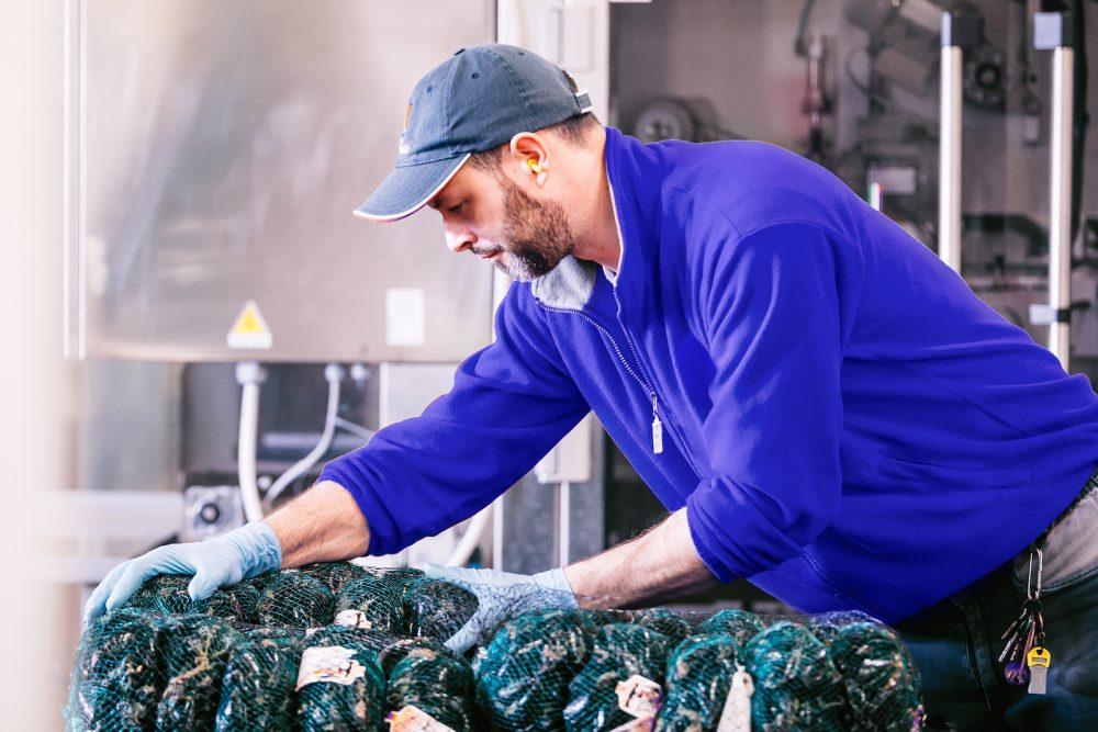 Preparazione di confezioni di cozze per il trasporto e la vendita | Finittica: lavorazione e vendita di molluschi bivalvi vivi