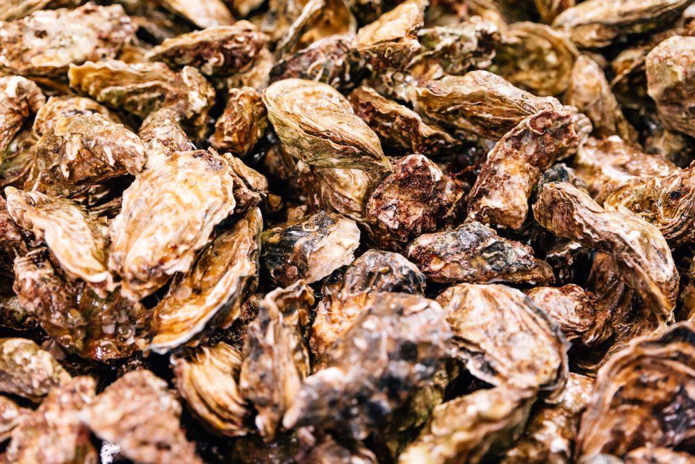 Finittica: lavorazione e vendita di ostriche