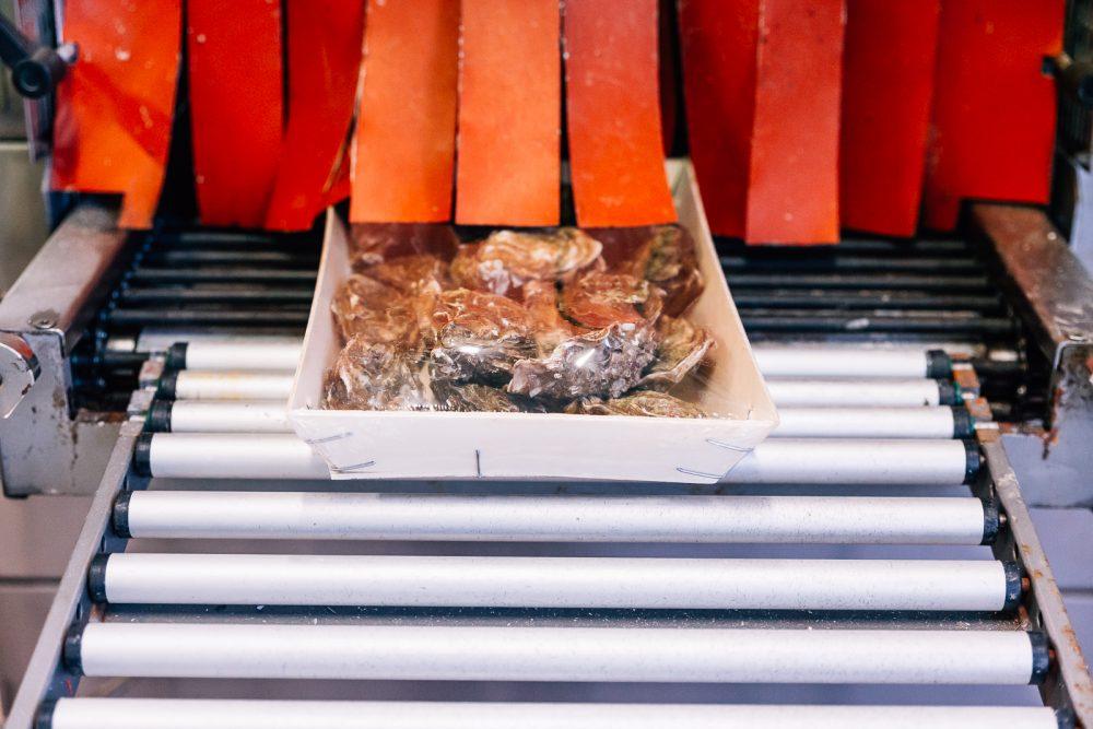Confezionamento ostriche | Finittica: lavorazione e vendita di ostriche