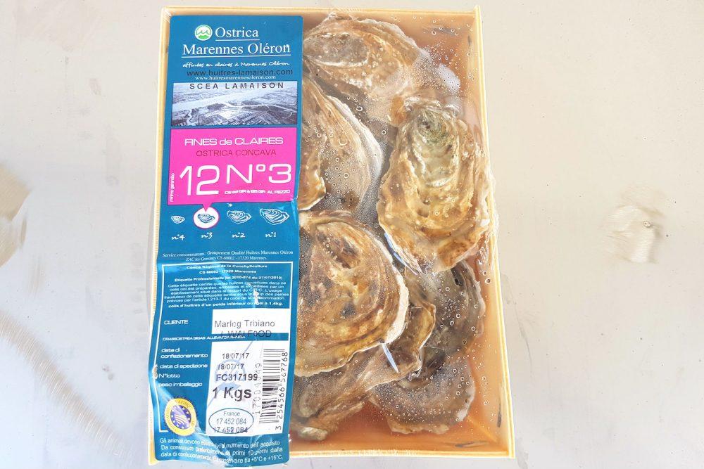 Confezione ostriche Marennes Oleron | Finittica: lavorazione e vendita di ostriche